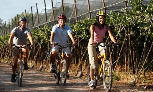 Vino y bici? Está de última moda!